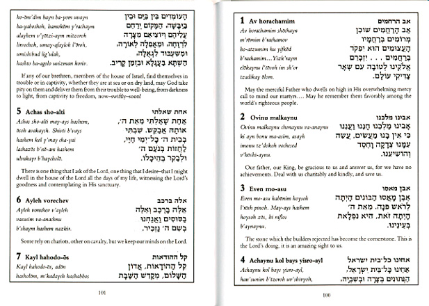 Bh10 Hebrew/ english